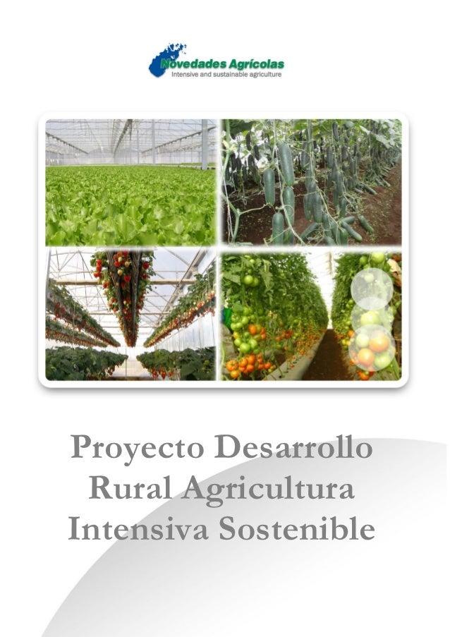 Proyecto Desarrollo Rural AgriculturaIntensiva Sostenible
