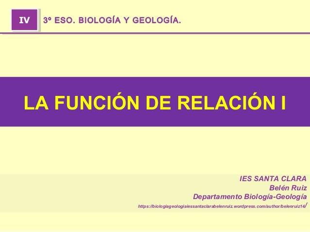 IES SANTA CLARA Belén Ruiz Departamento Biología-Geología https://biologiageologiaiessantaclarabelenruiz.wordpress.com/aut...