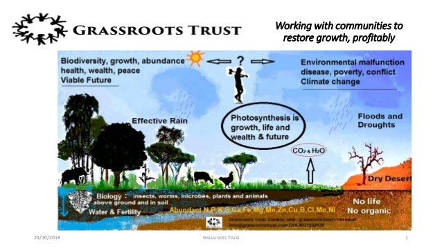 Working with communities to restore growth, profitably 24/10/2018 Grassroots Trust 1