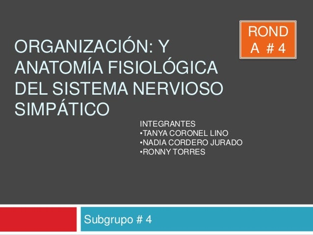 Sistema autonomo organizacion