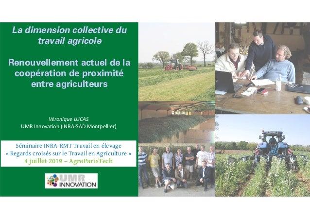 Véronique LUCAS UMR Innovation (INRA-SAD Montpellier) La dimension collective du travail agricole Renouvellement actuel de...