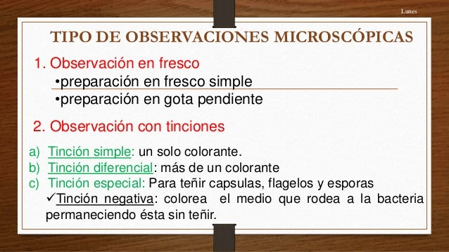 4 ta clase b tinciones bacterianas (1)