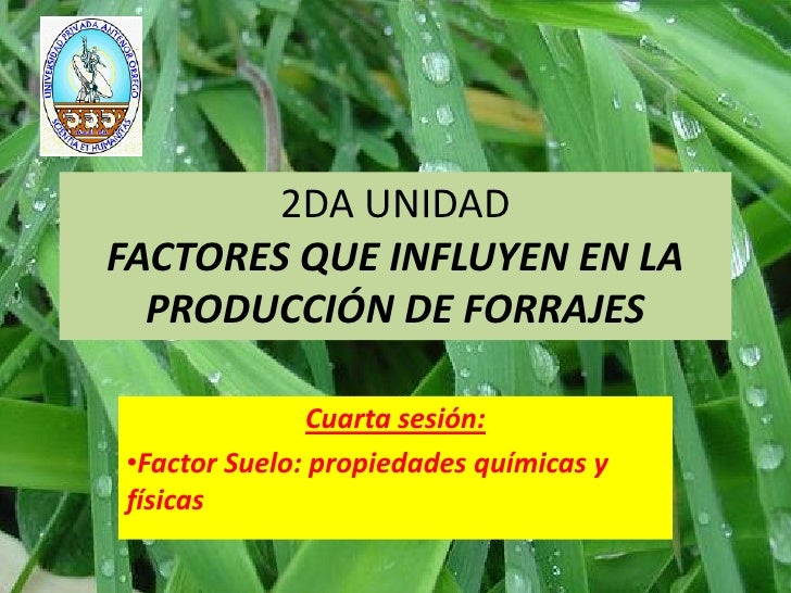 2DA UNIDADFACTORES QUE INFLUYEN EN LA  PRODUCCIÓN DE FORRAJES              Cuarta sesión:•Factor Suelo: propiedades químic...