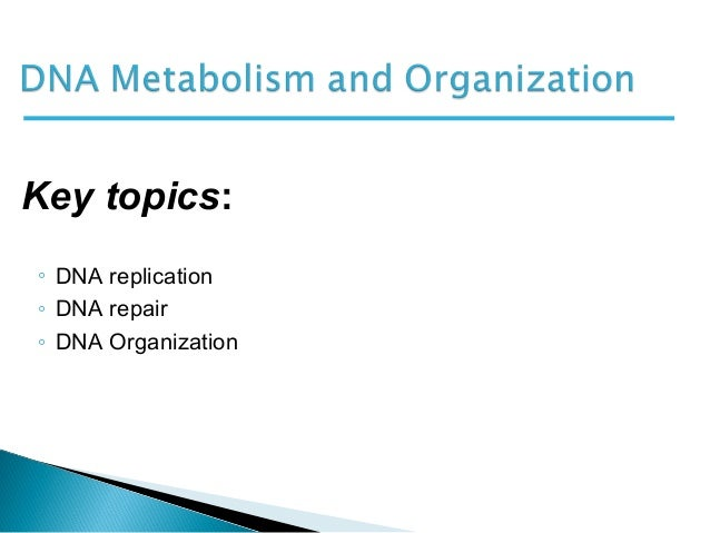 ◦ DNA replication◦ DNA repair◦ DNA OrganizationKey topics: