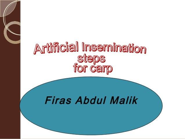 Firas Abdul Malik