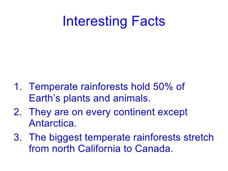 Tropical rainforest human impact
