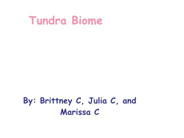 Tundra Biome  By: Brittney C, Julia C, and Marissa C