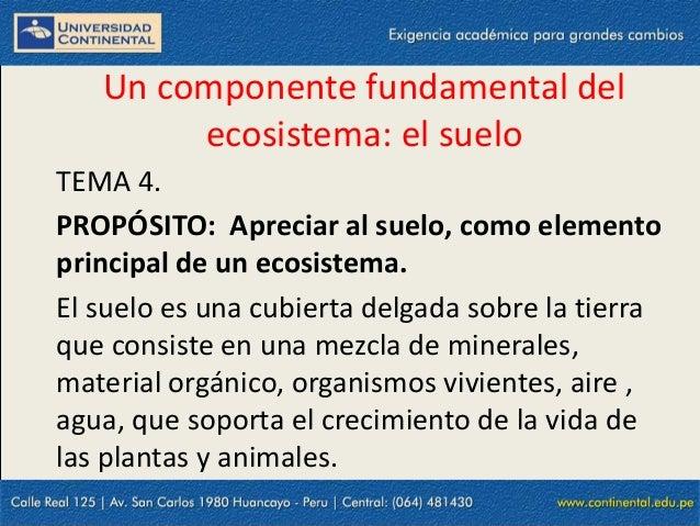 15/09/2013 1 Un componente fundamental del ecosistema: el suelo TEMA 4. PROPÓSITO: Apreciar al suelo, como elemento princi...
