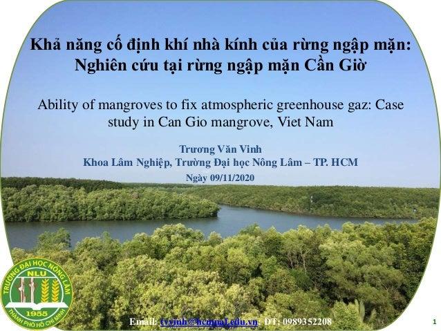 Khả năng cố định khí nhà kính của rừng ngập mặn: Nghiên cứu tại rừng ngập mặn Cần Giờ Ability of mangroves to fix atmosphe...