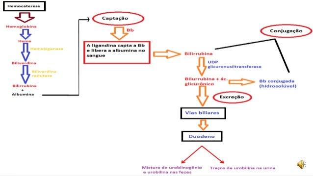 Cómo Dieta cetogénica sin conducirte loco