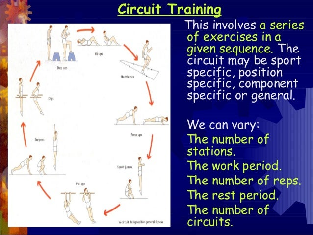 Circuit Training News Examples Of Circuit Training Exercises