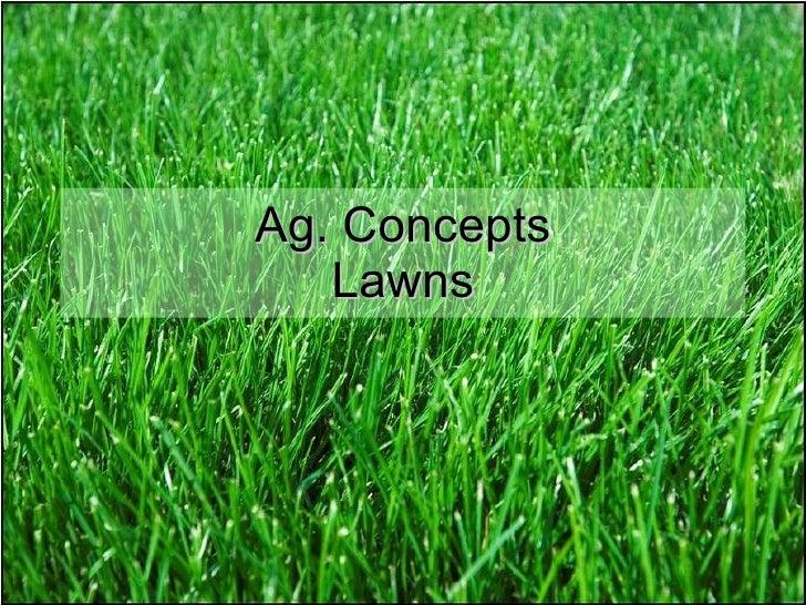 Ag. Concepts Lawns