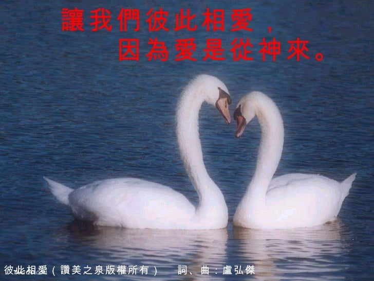 讓我們彼此相愛,      因為愛是從神來。 彼此相愛(讚美之泉版權所有)  詞、曲:盧弘傑