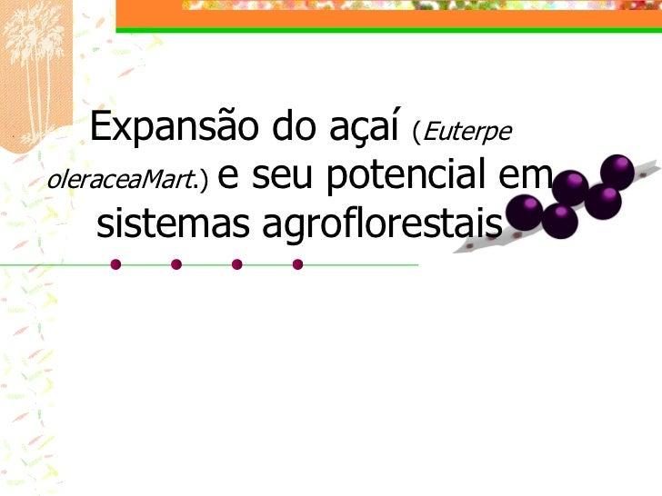 Expansão do açaí (EuterpeoleraceaMart.) e seu potencial em     sistemas agroflorestais