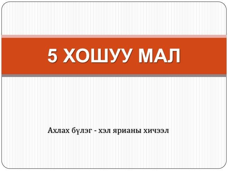 5 ХОШУУ МАЛАхлах бүлэг - хэл ярианы хичээл