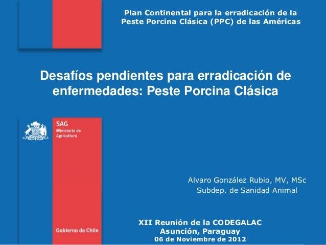 Plan Continental para la erradicación de la Peste Porcina Clásica (PPC) de las Américas  Desafíos pendientes para erradica...