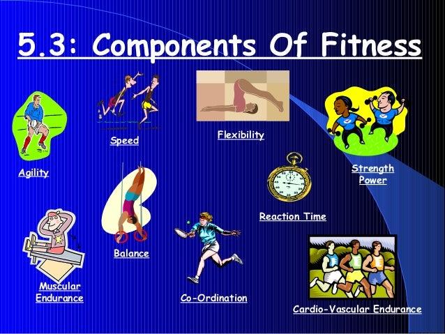 5.3: Components Of Fitness Agility Muscular Endurance Balance Co-Ordination Cardio-Vascular Endurance Flexibility Reaction...