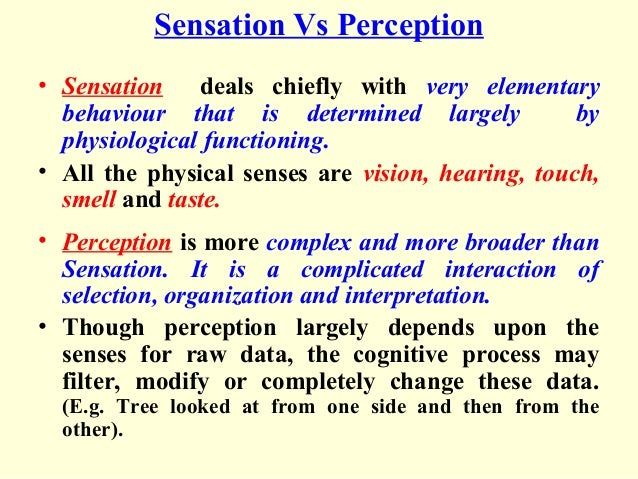 physiological perception filters essay In answering these questions the paper introduces the concept of immediate perception, that is the physiological response to a perceptual field with this base the paper then analyses the complete act of perception involving interpretation of the physiological immediate perception.