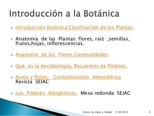 Anatomía plantas Seminario Clínica de Asma y Alergia