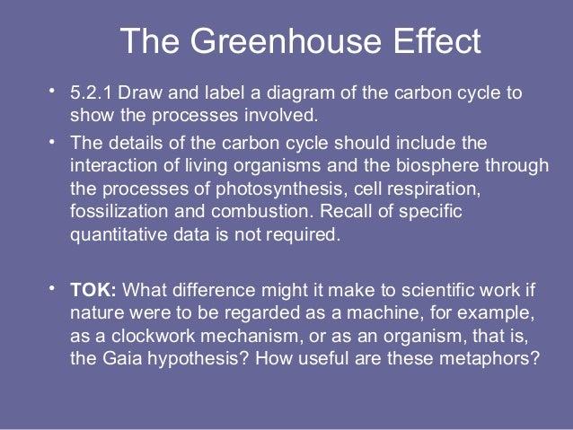 52 the greenhouse effect 45 the greenhouse effect ccuart Gallery