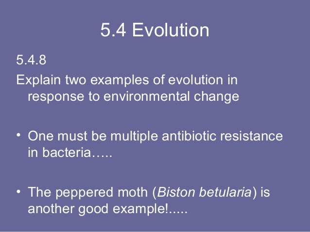 evolution and antibiotic resistance essay Previous ib exam essay questions: reference to evolution by natural selection 6 antibiotic resistance in bacteria is an example of evolution in response to.