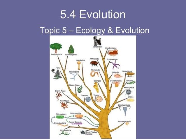 5.4 Evolution Topic 5 – Ecology & Evolution