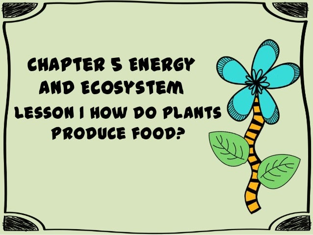 Chapter 5 Energy and Ecosystem Lesson 1 How do plants produce food?