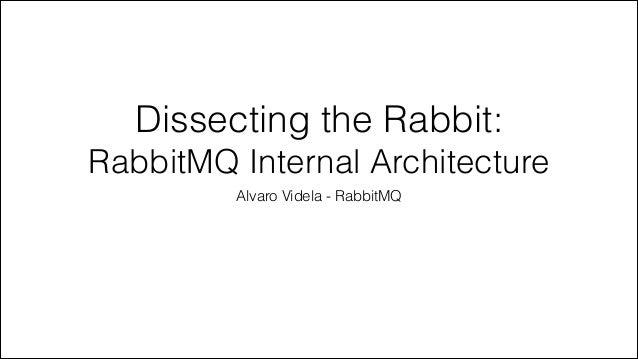 Dissecting the Rabbit: RabbitMQ Internal Architecture Alvaro Videla - RabbitMQ