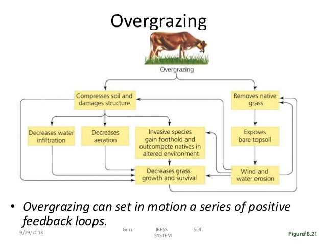 overgrazing diagram