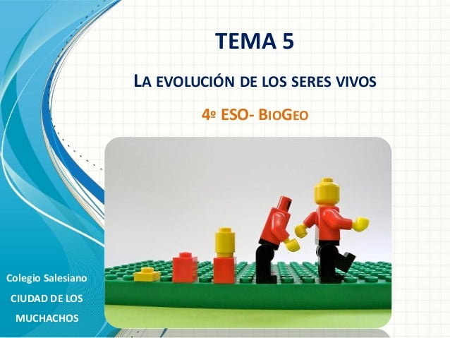 TEMA 5 LA EVOLUCIÓN DE LOS SERES VIVOS 4º ESO- BIOGEO  Colegio Salesiano CIUDAD DE LOS MUCHACHOS
