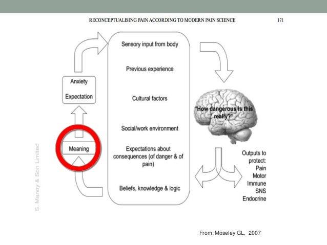 (Ziekte) symptomen Informatie vanuit ervaring, cultureel, externe bronnen (abstract + formeel) Cognitieve ziektepercepties...