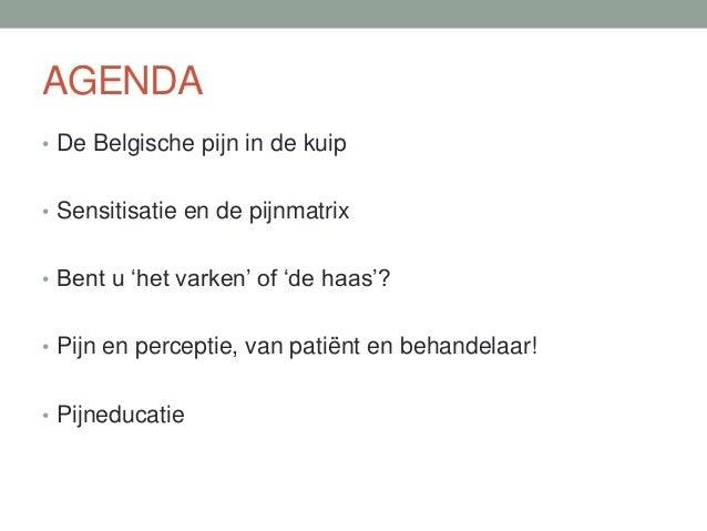 AGENDA • De Belgische pijn in de kuip • Sensitisatie en de pijnmatrix • Bent u 'het varken' of 'de haas'? • Pijn en percep...