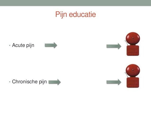 Transdisciplinair model 1 + 1 + 1 = 4 Psycholoog Arts Fysiotherapeut Patiënt met chronische pijn Wetenschappers Partners S...