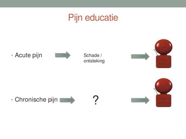 Transdisciplinair model (Transcare model) • Patiënt centraal • Discipline overstijgende kennis (scholing) en werkwijze (ov...