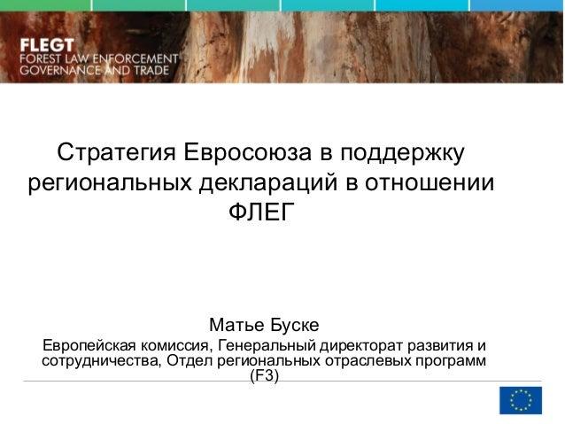 Стратегия Евросоюза в поддержку региональных деклараций в отношении ФЛЕГ Матье Буске Европейская комиссия, Генеральный дир...