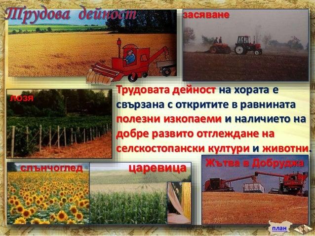 Тук са построени предприятия за производство на  консерви, брашно, сирене, масло и олио, фуражи за  животните и др.  Предп...