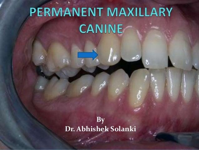 By Dr. Abhishek Solanki