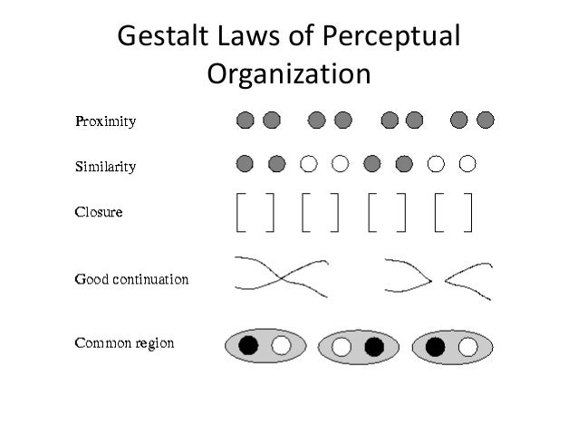 Describe and evaluate the Gestalt laws of perceptual organization.