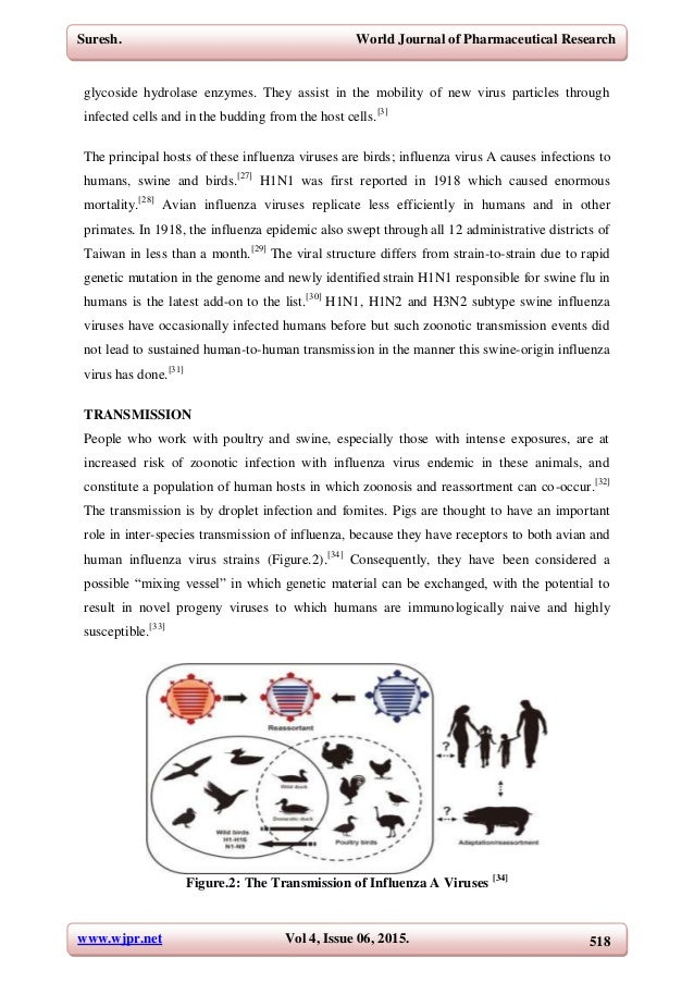 influenza a h1 n1 virus essay Thus, our data show that 2009 h1n1 influenza viruses have evolved  in  summary, our findings here suggest that increased vigilance in viral.
