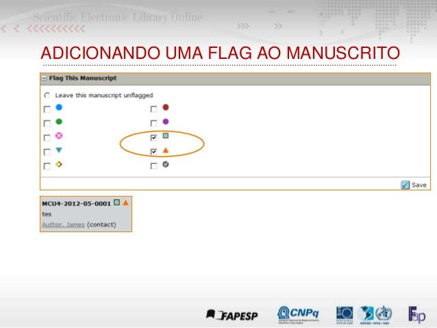 ADICIONANDO UMA FLAG AO MANUSCRITO