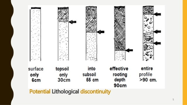 Potential Lithological discontinuity 5