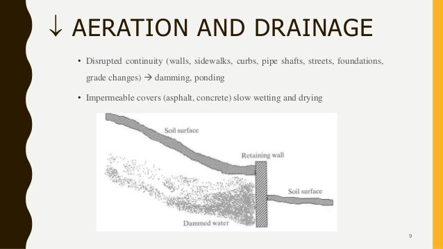  AERATION AND DRAINAGE • Disrupted continuity (walls, sidewalks, curbs, pipe shafts, streets, foundations, grade changes)...