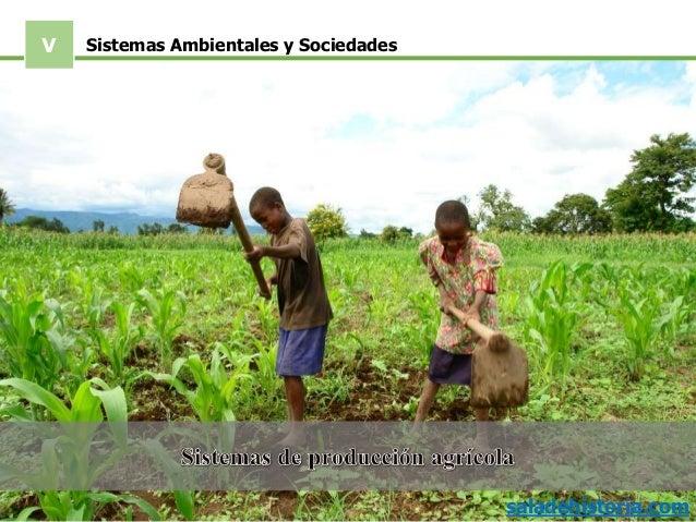 V saladehistoria.com Sistemas Ambientales y Sociedades