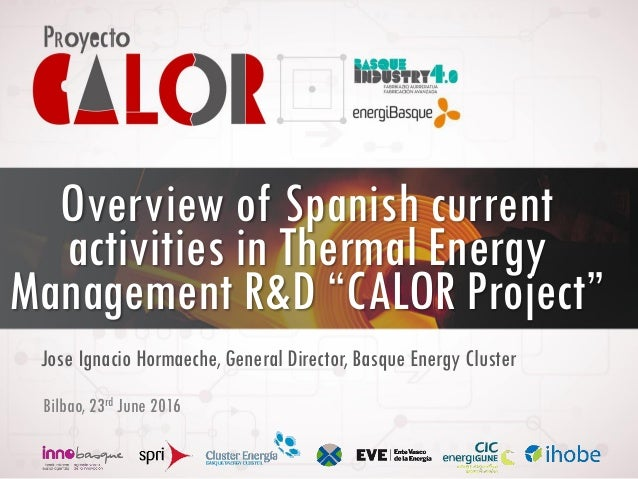5. WS Effective use of thermal energy in industry_CALOR Project