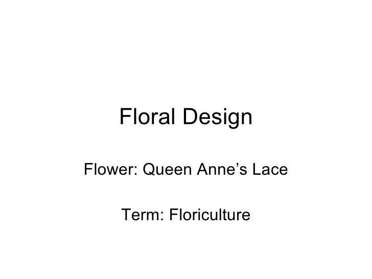 Floral Design Flower: Queen Anne's Lace Term: Floriculture
