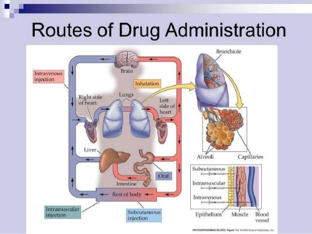 Disadvantages of Oral admin. • Slow absorption delayed onset of action Not suitable for emergencies • Unpalatable and irr...