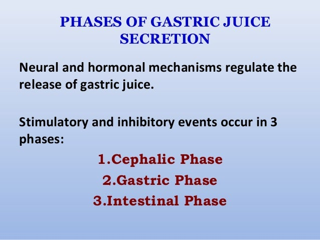 phases of gastric secretion