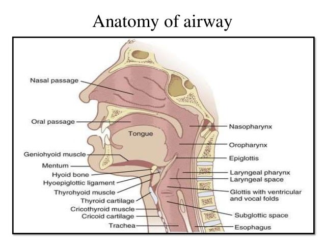 Endotracheal intubation in oral & maxillofacial surgery