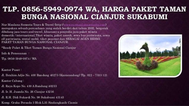 5 Tlp 0856 5949 0974 Wa Harga Paket Taman Bunga Nasional