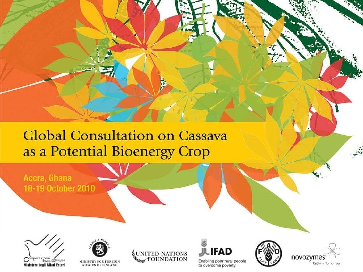 The IFAD Regional Cassava Processing and Marketing Initiative    THE USE  OF CASSAVA WASTES TO PRODUCE BIO-ENERGY:  OUTCO...